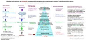9_piramida_samoaktualizacii